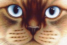 Cats / by Alexandra May Jewellery