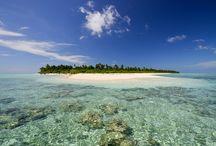 """Yoga en Maldivas / 1.190 islas coralinas repartidas en 26 atolones en medio del Océano Índico. Al sur de la India se encuentran estás paradisíacas islas que poseen un clima cálido durante todo el año, lo que las convierte en el sitio ideal para olvidarse, por unos días, de la agitada vida urbana.  A bordo de un """"dhoni"""", un barco típico maldivo, navegaremos entre las Islas más increíbles de Maldivas, practicando yoga con el profesor Ricardo Ferrer.  http://mint57.com/viajes/viaje-yoga-a-maldivas-2/"""