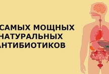 Натуральные антибиотики