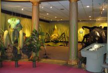 Exhibits / Every 90 days or so the Port Huron Museum hosts a new traveling or in-house exhibit.