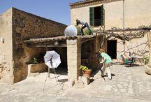 Wir bei der Arbeit / Hier gibts Bilder von Auf nach Mallorca Mitarbeitern bei der Arbeit auf Mallorca zu sehen.