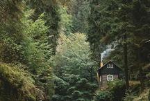 Doğa & Nature