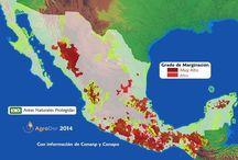 Mapas / Análisis mediante sistemas de información geográfica.