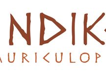 Imatge corporativa per Indiketa. / Creació de la imatge corporativa per Indiketa. Disseny de logotip, disseny de papereria, targetes i flyers.