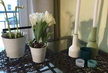 Frühlingsdeko & Ostern basteln / Meine Frühlingsdeko DIY Tipps für den bunten Monat und Ostern: weckt wahre Frühlingsgefühle :)  Alle Pins sind meine selbstgemachten Ideen für euch zum Nachbasteln! Einfach für mehr Wohlfühlen durch DIY Deko Ideen. Bastelt Ostern und Frühlingsdeko jetzt!
