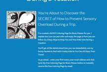 BrainFitness TMOM / Brain Fitness Traveling Mom
