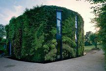 Architecture & Amazing