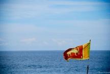 Sri Lanka  / by Shari