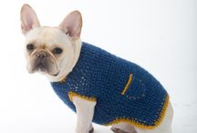 Crochet dog coats