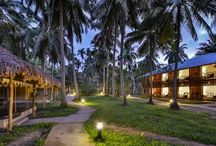 Seashell hotels and resorts Neil / Seashell hotels in all the island of neil,havelock and portblair functions in similar way and moreover concerned about the guest and doing good hospitality to the guest of seshell hotels. Call on: +91 3192 242773 , +91 3192 242774.