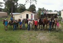 STANDZ ON HORSES AT CHOYCE HORSE CAMP / All the kids like to show off their standing ability and their calm and patient horses!