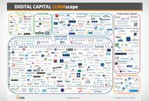 Startups & Venture Capital