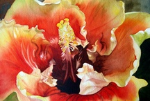 Collen Sanchez / Colleen Sánchez es un pintor contemporáneo con sede en Honolulu de flores y follaje, paisaje, y aún composiciones vida. Su interés por el dibujo comenzó a muy temprana edad, en parte influenciado por el interés de su padre en el arte y la música, pero que se dejó de lado durante muchos años mientras trabajaba y criar una familia. Después de una larga carrera de gestión en Canadá, donde nació y creció, Collen se trasladó a Hawai.