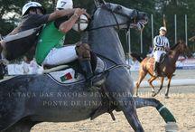 :. Horseball .: