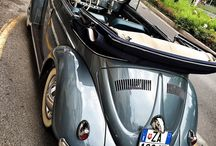 VW Bugs