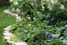 K Garden Ideas