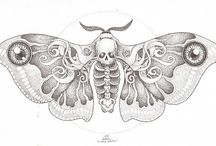 moth / by thewatt