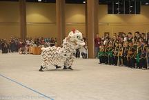 Lion Dance Orlando