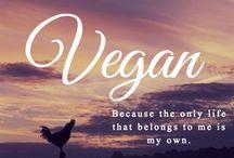 Vegan inspo ❤️