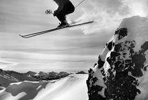 Gamle skibilder og dyrebilder