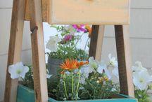 Växter, krukor & annat grönt