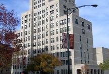 Loyola University Chicago / by Cynthia Shellum