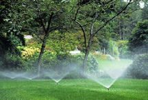 plano irrigation system / Custom irrigation solutions by Texas Waterboys - a family owned and operated business since 1986.