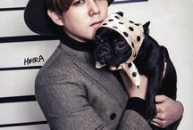 Kim Youngwoon (Kangin) ❤