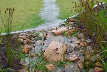 Rain Gardens and Rain Barrels / Water catchment systems and conservation!