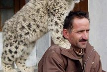 Zwierzęta niezwykłe