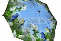 Umbrella, Ombrelli, Regenschirm, Parasol