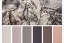 χρωματα