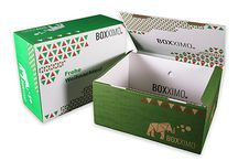 Transportverpackung L / Transportverpackung L vom Verpackungsshop Boxximo. Individuelle Transportverpackungen & Versandverpackungen ab Auflage 1 Stück jetzt bei www.boxximo.de - Ihrem Verpackungsprofi im Internet.