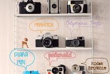 The best of Lomography