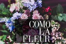 Como la Fleur / All the pretty flowers that make girls smile