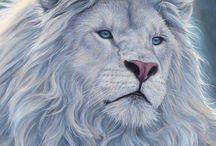 singa lion