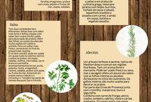 Ervas frescas uso