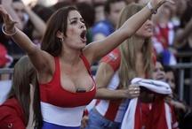 World cup 2014 *brazil