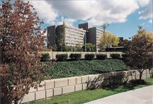 Commercial Projects - Retaining Walls