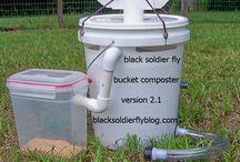 Black Soldier Flys / Harvesting and using black soldier flys.