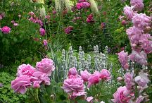 ogrody romantyczne