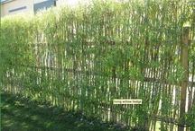 Gardening - fences & hedges