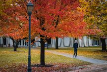 Marquette In The Fall / The Best Fall Foliage Photos of MU!