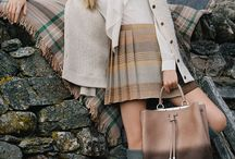 Fall Campaigns