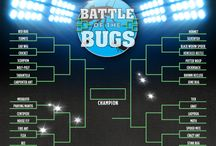 Battle of the Bugs! / HomeTeam's Battle of the Bugs pits 32 pests against each other in a head-to-head bracket contest until a final victor is crowned. The more you play, the better your chances are to win!