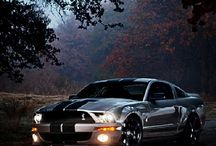 Mustangs and other Great Cars / Cars of all ages of Mustangs