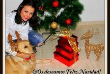 www.laprincesarosa.com