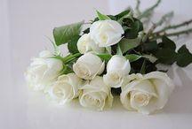 Kwiaty / Moje ulubione :)