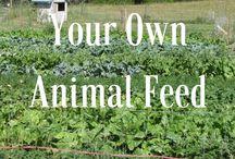 Micro farming