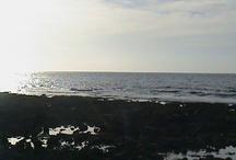 sea, shores, and beaches